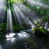 Light and stream