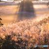 Autumnal scenery ~ Toushi