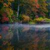 Autumn coloring