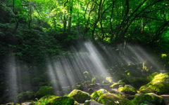 Waterfall of light