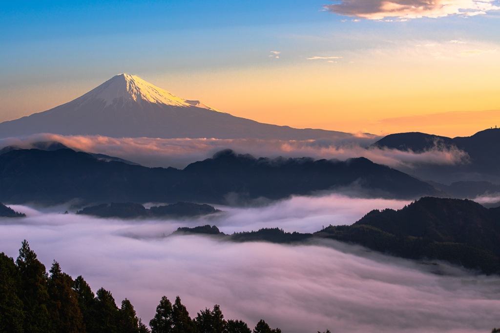 Sea of Clouds Morning