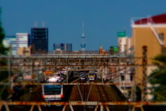 tokyo straight line