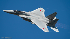 F15 岐阜予行 11/15