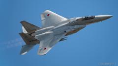 F15 岐阜予行 11/14