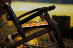 深まる秋①