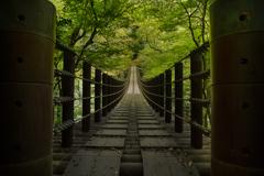 秋待つ吊り橋