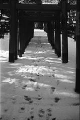 雪の降った日1