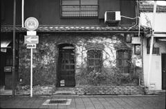蔦の絡まる喫茶店?