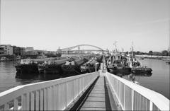 大正内港はしけ桟橋1