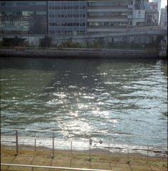 きらめく川面