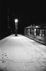 雪が降った朝2