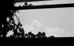 窓のむこうは