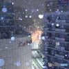 東京では大雪