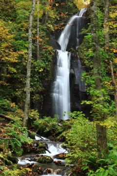 奥入瀬 滝二題 雲井の滝