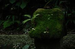 苔石の祠に…