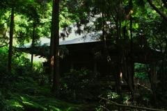 苔寺・鐘楼の陰影…