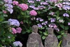 安養院・古仏像を飾る…