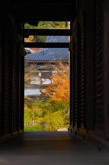 円覚寺の秋模様…2
