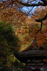 円覚寺の秋模様…4