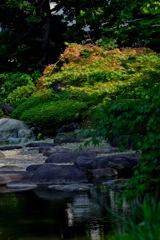 旧古河庭園・日差し…