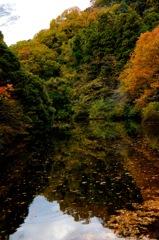 秋景の鎌倉湖…3