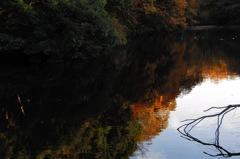 晩秋の鎌倉湖…1