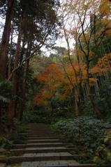 穏冬の古刹…瑞泉寺1