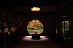 秋彩の円窓…2