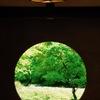 禅寺の緑景…1