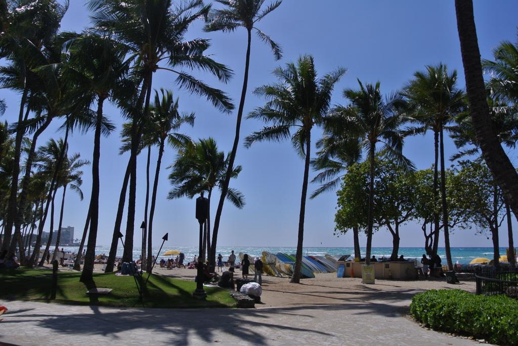 Waikiki Snapshot…15