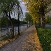 都心の秋色…1