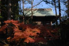 円覚寺の秋模様…1