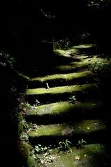 古寺の陰影…2