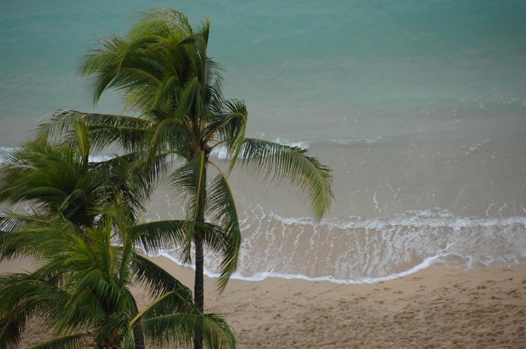Waikiki Snapshot…17
