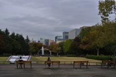 都心の秋色…2