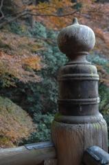 新春の古刹 妙本寺…2