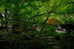 緑園の古寺…2