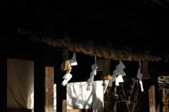 早春の八幡宮…2