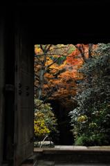 晩秋の名刹…3