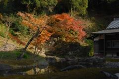 円覚寺の秋模様…3