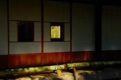 浄妙寺の日向…