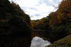 秋景の鎌倉湖…1