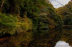秋景の鎌倉湖…4