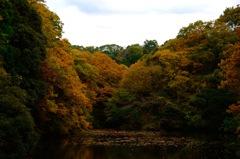 秋景の鎌倉湖…2