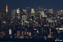 Tokyo Night Lights Ⅱ