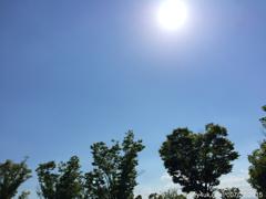 夏の青空に容赦ない太陽ヘトヘト到着〜この青空のために