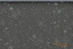 11:05 Spring Snow Angel 春分の日の雪〜シャッター優先