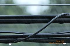 typhoon12 RainDrop BlackCable〜台風雨で気温、心潤う