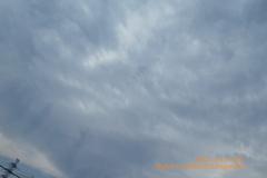 CatDay22222HopeSky特別な#猫の日am曇り希望の猫光(絞り優先)