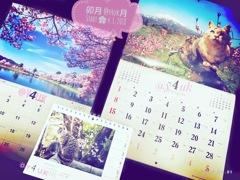@y4uk月・卯月スタート〜岩合光昭にゃんこ&信州カレンダー